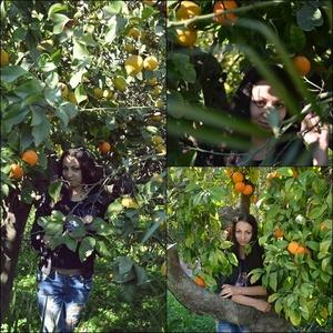 Marina,24-15